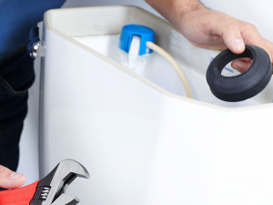 toilet repair raleigh