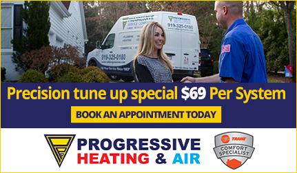Progressive Plumbing Tune up special